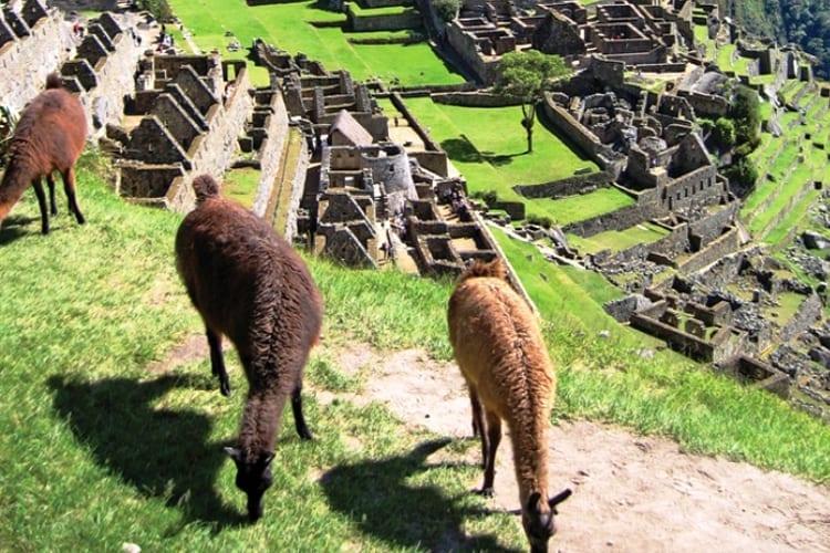 Peru_IncaTrailExpress2